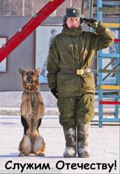 Служебное собаководство в России