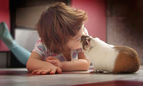 children-kind-to-animals3