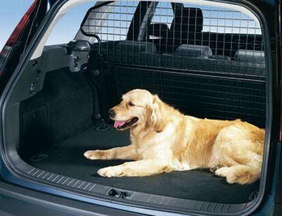 Как транспортировать животное, в случае необходимости