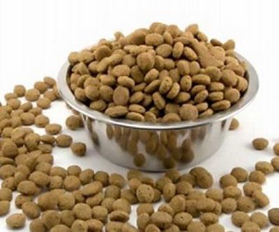 Какой корм лучше для вашей собаки