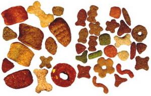 Как правильно выбрать корм для собаки