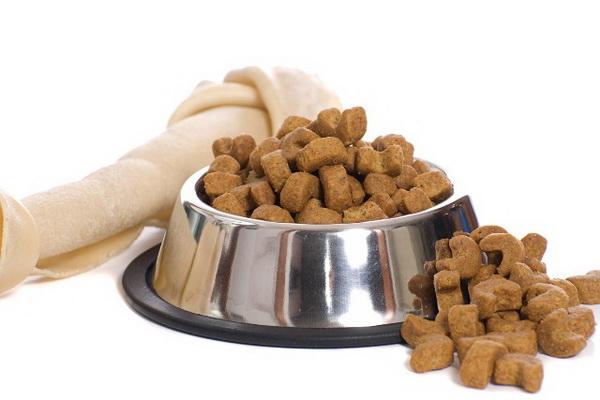 Как подобрать корм для собак?
