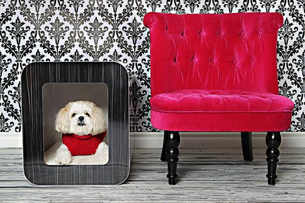 Домики для собак: создаём уют для питомца