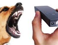 Эффективность ультразвуковых отпугивателей собак