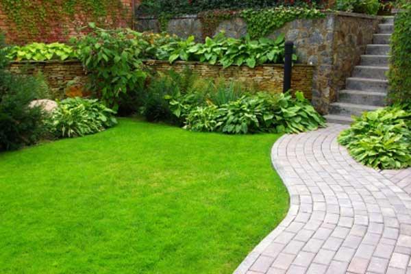 Сделайте свой домашний сад новым любимым местом для отдыха
